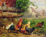 Carl Jutz - Farmyard Chickens