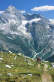 All Canada Photos (F1 Online) - Gletscher-Nationalpark, Kurt Werby